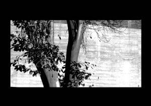 ga-estudio-thumbnail-retina-i-2